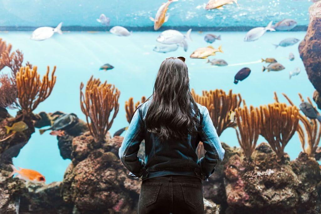 Kobieta przed akwarium